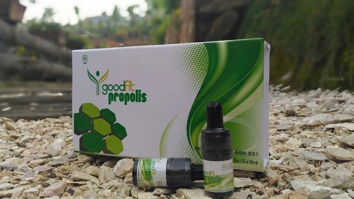 propolis goodfit
