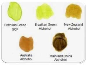 jenis propolis, propolis, propolis brazilian, brazilian green propolis, propolis nano, merk propolis, propolis terbaik