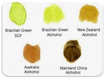 jenis propolis propolis brazilian asli propolis nano terbaik