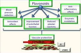 propolis brazilian propolis nano khasiat propolis www.propolis4life.wordpress.com 082218120457