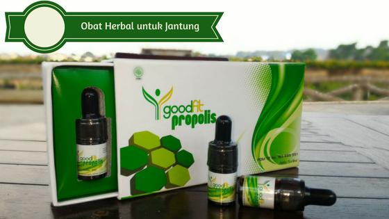 obat herbal untuk jantung, obat jantung koroner, propolis untuk jantung