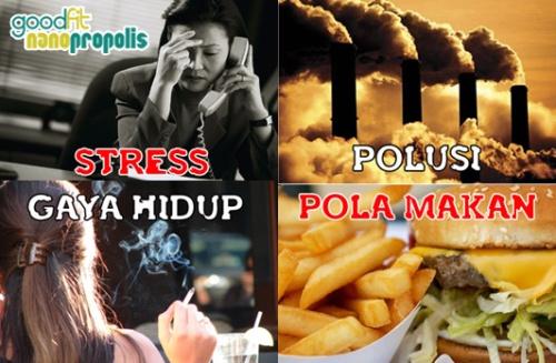 manfaat propolis, khasiat propolis, propolis, propolis nano, propolis brazilian