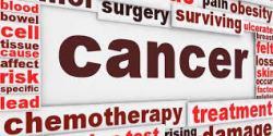 manfaat propolis, khasiat propolis, propolis brazilian, propolis nano, propolis terbaik, harga propolis, jual propolis, obat propolis, efek samping propolis, dosis propolis, kanker leher rahim, obat kanker, penyakit kanker, pengobatan alternatif, kanker leher rahim