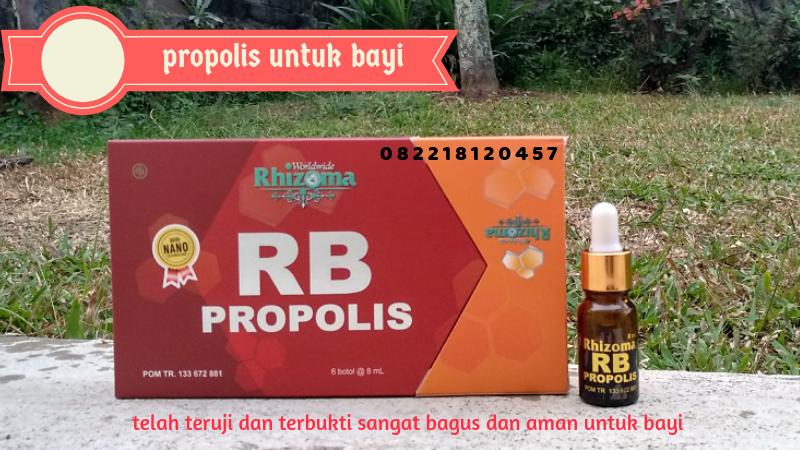 propolis yang bagus dan aman untuk bayi
