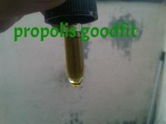 propolis brazilian green, propolis terbaik, propolis goodfit