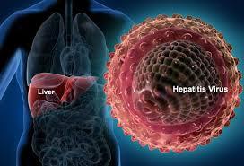 obat hepatitis, obat penyakit liver, obat herbal hepatitis, obat herbal liver, propolis untuk hepatitis