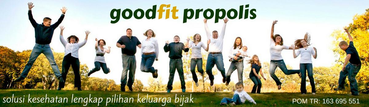 OBAT PROPOLIS GOODFIT