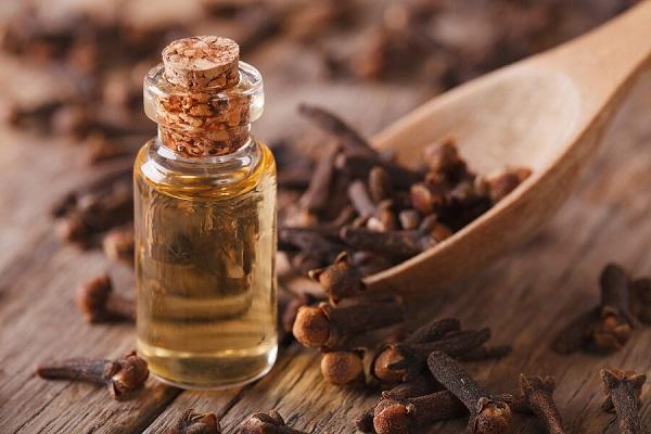 manfaat minyak cengkeh untuk kesehatan