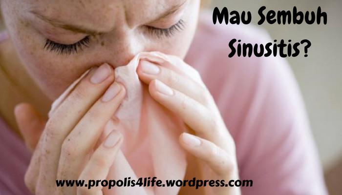 cara mengobati sinusitis, obat sinusitis, obat untuk sinusitis