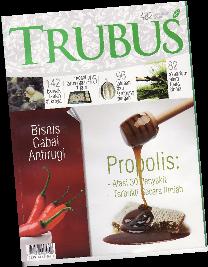 trubus propolis