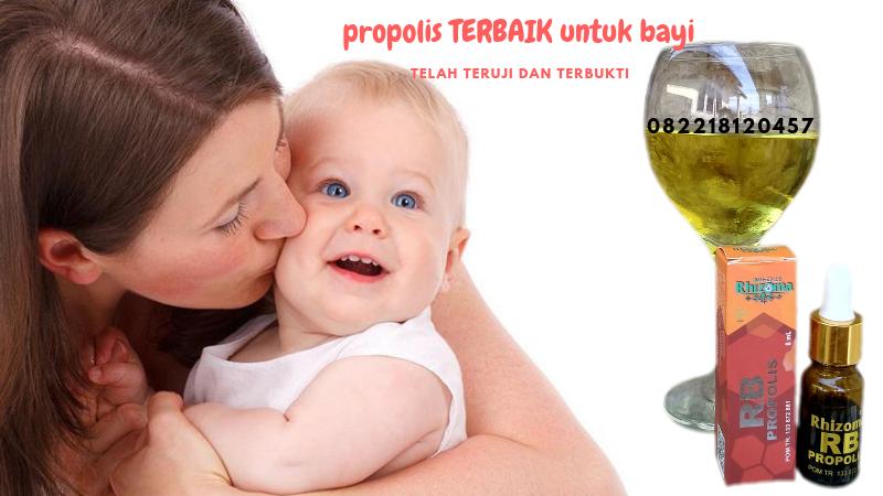 propolis terbaik untuk bayi